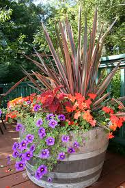 Vegetable Pot Garden by Fall Color Container Planting Idea Fall Containers Petunias And