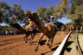 australian sports and recreation australian sports and
