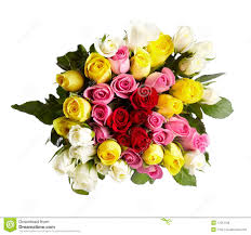 Bouquet Of Roses Bouquet Of Roses Stock Photo Image 17013190