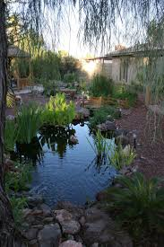 142 best ponds images on pinterest garden ponds backyard ponds