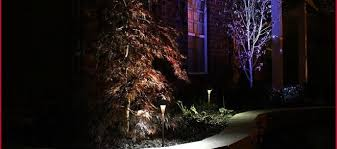 Landscape Spot Lighting Landscape Forms Lighting For Better Experiences B Dara Net