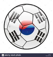 Korea Flag Icon Isolated Illustration Flag South Korea Icon Sport Sports Soccer
