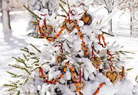 bird seed decorations for tree new winter bird feeder