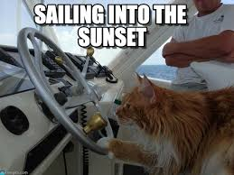 Sail Meme - sailing into the sunset cat got his boat meme on memegen