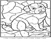 color number adults coloring pages free printable