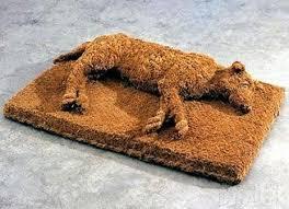 Fun Doormat Funny Doormats At Photos And Fun