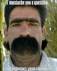Handlebar Mustache Meme - growing a handlebar moustache theshaveden