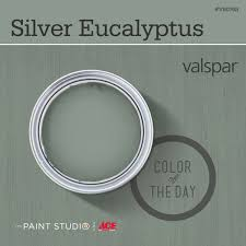 color of the day silver eucalyptus by valspar 31daysofcolor