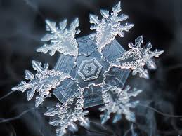 photos of snowflakes up close business insider