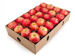 organic fruit basket delivery honeycrisp apples in season fruit delivery organic gift