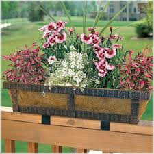 collection plant pots for railings photos free home designs photos
