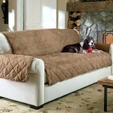 best sofa fabric for dogs best sofa fabric for dog hair www gradschoolfairs com