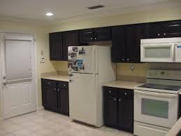 Dark Maple Kitchen Cabinets 28 Dark Maple Kitchen Cabinets 25 Best Ideas About Maple