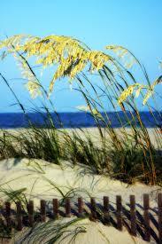 best 25 isle of palms ideas on pinterest charleston beaches