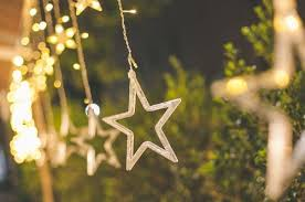 christmas branches with lights outdoor christmas decorations that highlight your landscaping