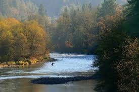 lodging river oregon morrison s rogue river lodge