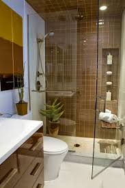 Basement Bathroom Designs