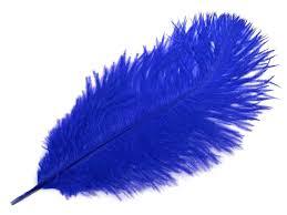 Modre by Modré Pštrosí Peří Brko 55 60cm