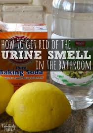 Acid For Bathroom Cleaning Best 25 Bathroom Cleaning Ideas On Pinterest Bathroom Cleaning