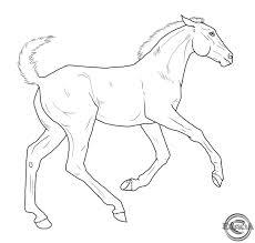 287 horses colour images coloring books
