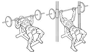 muscle building program i markymarks fitness