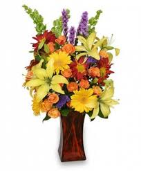 All About Flowers - canyon sunset arrangement in saint johnsbury vt all about flowers