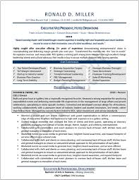 Resume For Supply Chain Executive Resume Executive Resume