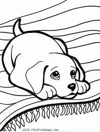 Puppy Coloring Pages Dog Coloring Pages Free Printable Coloring Puppy Color Pages
