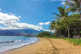 Hawaii landscapes images Free photo beach landscape hawaii maui free image on pixabay jpg