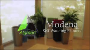 Lucca Steel Leaf Gazebo Cover by Algreen Modena Plastic Hanging Planter U0026 Reviews Wayfair