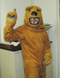 lion costume spirit halloween spanier lion