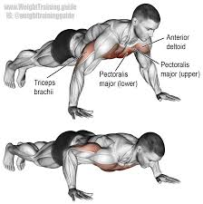Chest Workouts Without Bench The Push Up Is An Extremely Versatile Bodyweight Exercise That