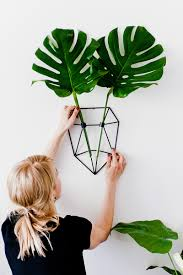 eco deer the botanical trophy board for plant lovers