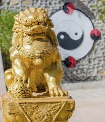 gold lion statue gold lion sculpture with background of yin yang stock