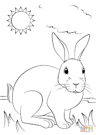 cute rabbit coloring page free printable coloring pages