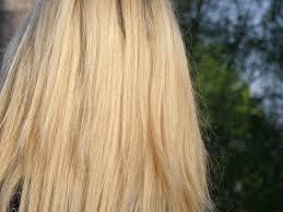 Frisuren Lange Haare F by Kostenlose Foto Haar Mähne Blond Frisur Lange Haare Hell