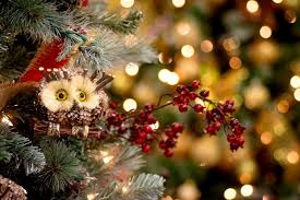 christmas owl christmas decorations outdoor lighted for