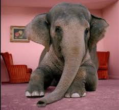 Elephant In The Living Room | the elephant in the living room tobacco harm reduction news