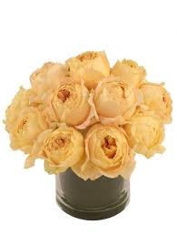 balloon delivery worcester ma chagne roses garden roses bouquet in worcester ma gatto s