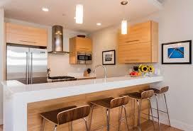 condo kitchen ideas 20 dashing and streamlined modern condo kitchen designs home