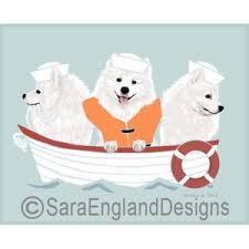 american eskimo dog ireland american eskimo sara england designs