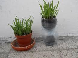 self watering pot diy youtube