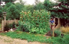gardening tips 40 gardening tips to maximize your harvest organic gardening