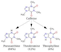 caffeine wikipedia