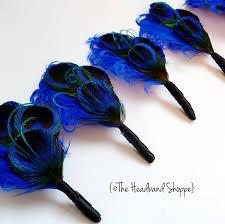 Royal Blue Boutonniere Royal Blue Boutonniere Peacock Wedding The Bride Pinterest