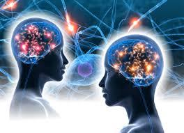 Brain Mapping Siren U0027s Song The Human Spirit Asia Trend