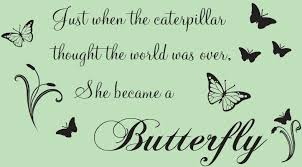caterpillar to butterfly quotes quotesgram quotes
