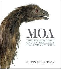 moa siege social 33 best moa bird images on bird cage egg and eggs