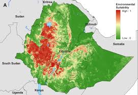 Ethiopia World Map by A New Initiative To Map A Little Known Disease Brings Hope Of