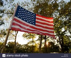 Usa Flag For Sale American Flag For Sale By Street Vendor At Sunset Battery Park New